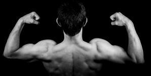 Muskeln richtig aufbauen – bringen Sie Ihren Körper in Form