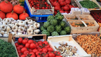 Vitalpilze zur Förderung eines gesunden Stoffwechsels